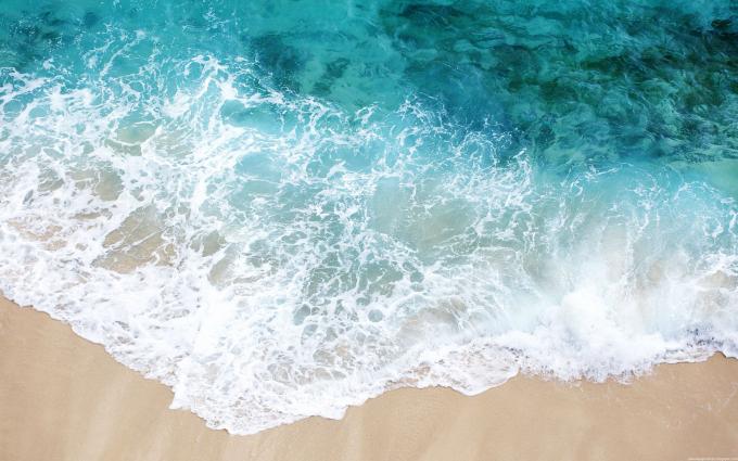 Живые Обои Океан